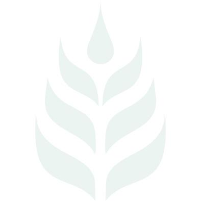 Agnus castus 550mg 60's