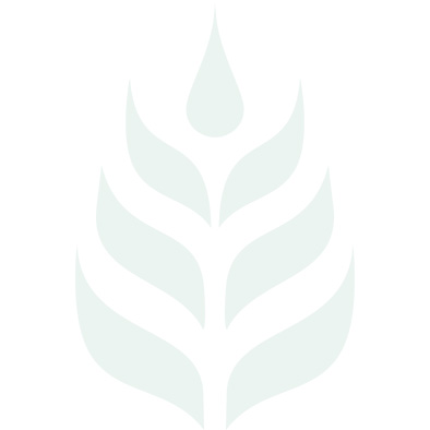 Green Coffee Bean standardizzato